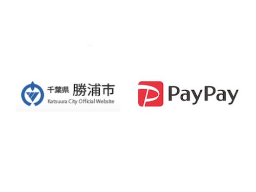 勝浦市PayPayキャンペーンで最大25%還元!
